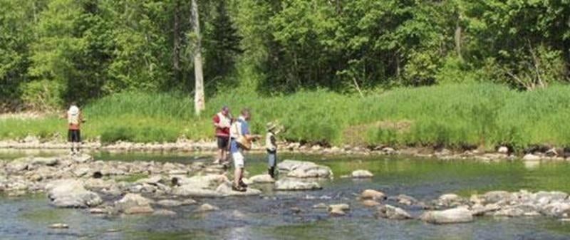 Des élèves du Club de pêche à la mouche de l'école René-Saint-Pierre ont participé à une sortie de pêche sur la rivière Nicolet grâce à la générosité des Canadiens de Montréal et du Club Optimiste de Douville. Ces élèves participent depuis le début de l'année à l'appropriation de connaissances entomologiques, apprennent à monter leurs mouches et se pratiquent au lancer particulier de cette pêche. La persévérance scolaire étant au coeur de leur réussite, ce club fut dès le début de l'année prisé