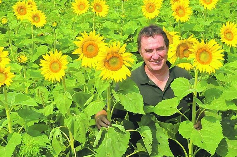 Christian Champigny, de la ferme Champy, accueillera le public dans ses champs de tournesols les 1er et 2 août.