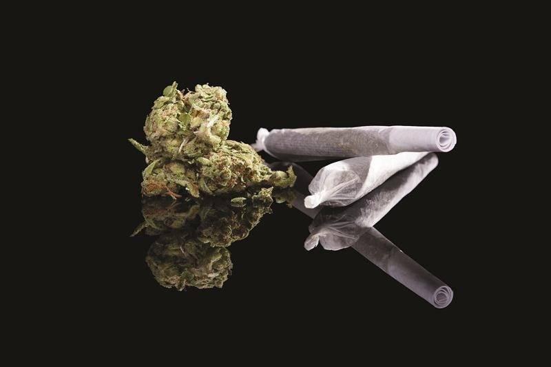 Légalisation du cannabis : la Santé publique se positionne
