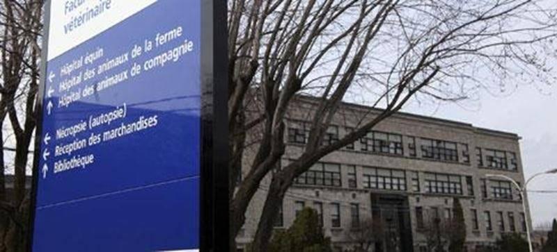La Faculté de médecine vétérinaire de l'Université de Montréal.