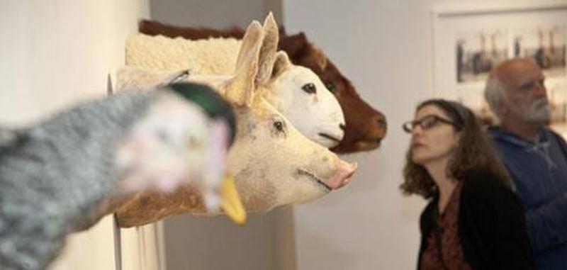 L'oeuvre de Kim Waldon, <em>Belles créatures</em>, présente six têtes d'animaux naturalisées.