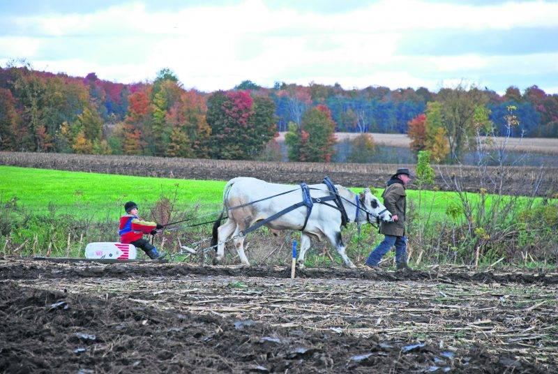 Le Festival du Labour de Saint-Valérien-de-Milton sera de retour le samedi 14 octobre, sur le 10e Rang, avec des activités mettant en valeur les traditions agricoles.    Photo courtoisie Festival du Labour