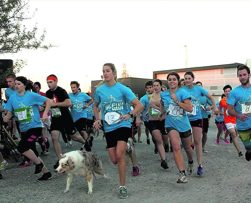 Les participants sont invités à courir ou à marcher avec leur chien le 29 septembre dans le cadre de la journée mondiale contre la rage.