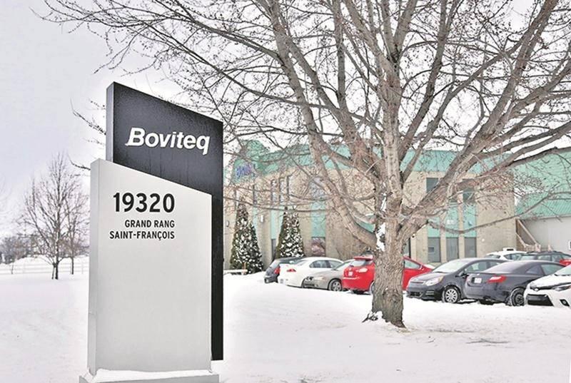 Boviteq, un centre de recherche et de production d'embryons bovins situé sur le Grand rang Saint-François, déménagera dans les installations du CIAQ basées sur la rue Sicotte. Photo Robert Gosselin   Le Courrier ©