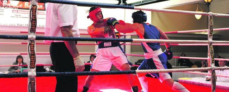 Le Club de boxe de Saint-Hyacinthe et Les Apprentis Champions tiendront chacun un gala de boxe au cours de la fin de semaine. Photothèque | Le Courrier ©