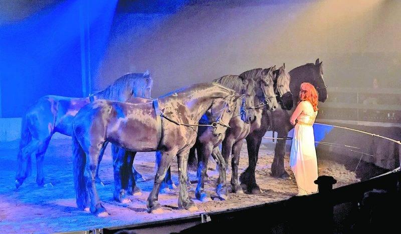 Sur la photo, Maryse Bérubé exécute un numéro de liberté avec six chevaux frisons pour le spectacle de Caval'Art de l'année dernière. Pierre Robinson