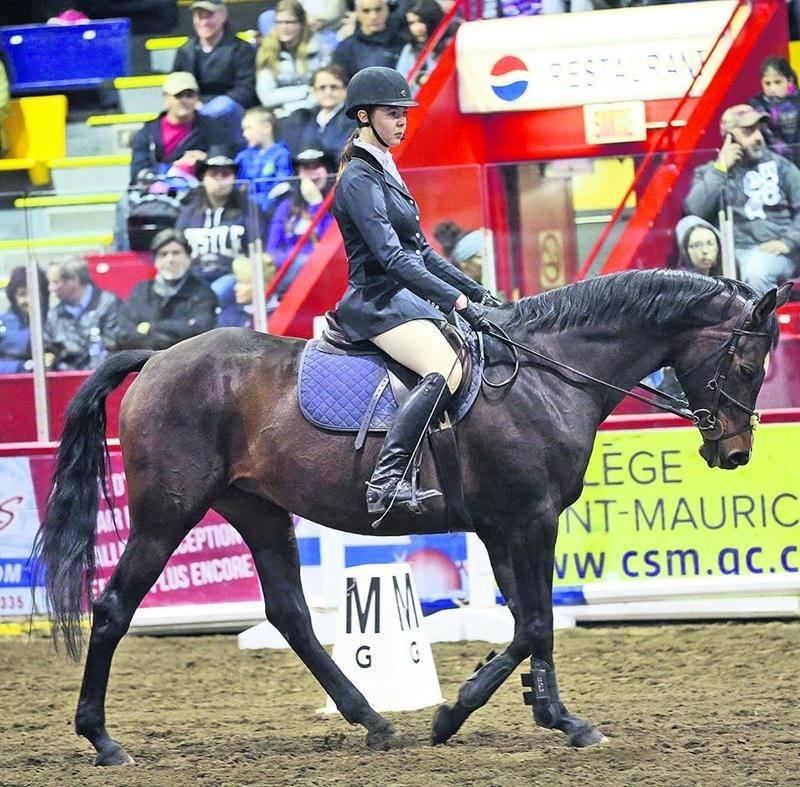 Pour une première fois, le Salon du cheval présentait un concours complet : concours combiné, avec épreuve de saut avec obstacles de cross.