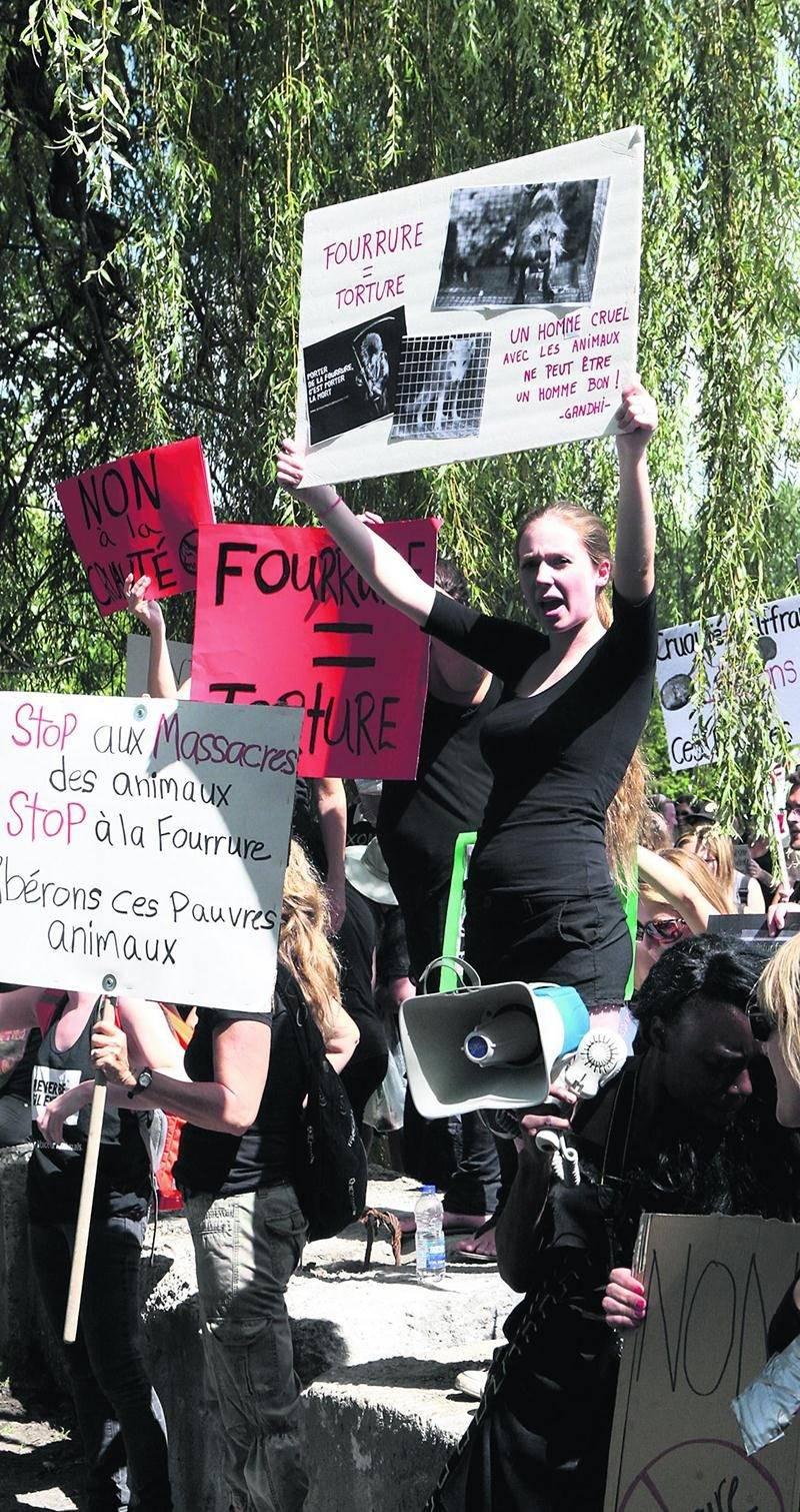 Une centaine de personnes ont manifesté contre la cruauté animale devant la ferme de l'éleveur de renards et de visons de Saint-Jude.  Photo Robert Gosselin | Le Courrier ©