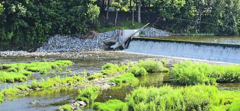 La rivière Yamaska à la hauteur de la centrale, à la fin du mois d'août. Photo François Larivière | Le Courrier ©