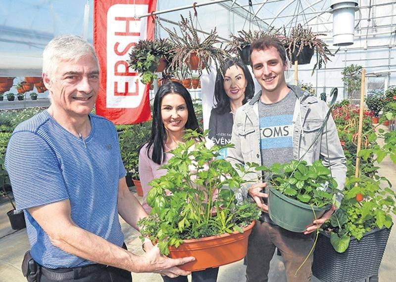 Le professeur François Ducasse, la députée Chantal Soucy et l'étudiant Charles Côté tiennent des petits jardins urbains créés avec soin par les étudiants de l'EPSH et qui seront distribués gratuitement à une centaine de résidents de la circonscription de Saint-Hyacinthe.