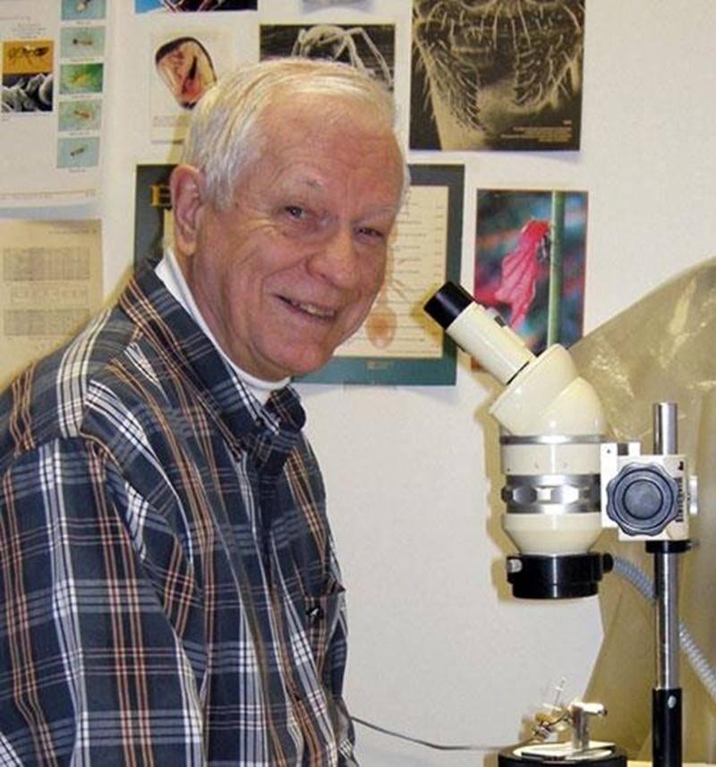 André Francoeur, professeur émérite de l'Université du Québec à Chicoutimi, est l'expert invité pour une journée de formation sur les fourmis.