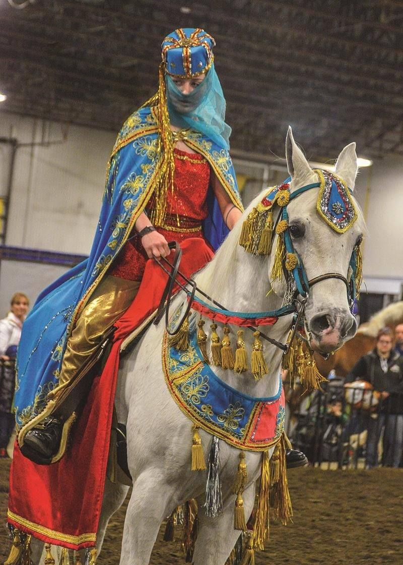 Près de 200 chevaux de toutes races étaient réunis au Pavillon des Pionniers, plusieurs défilant devant les visiteurs pour des présentations leur faisant découvrir différents types de chevaux.