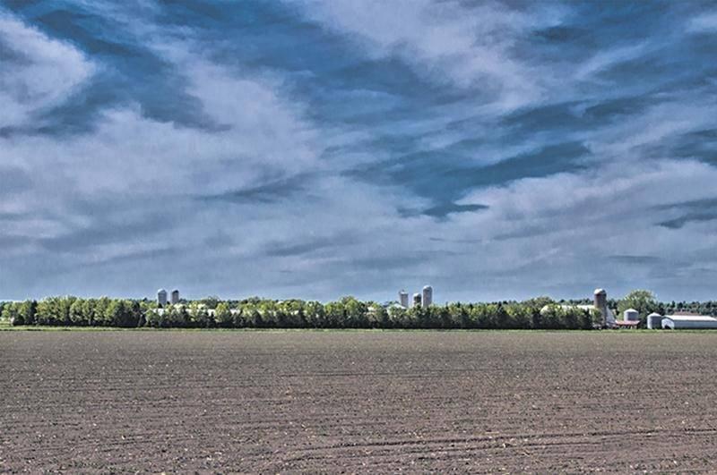 La région de Saint-Hyacinthe est reconnue pour ses sols argileux, mais on y retrouve aussi des terres noires précieuses, mais vulnérables face au vent et à l'eau. Une culture pérenne, le bleuet, a été préférée aux cultures annuelles traditionnelles. En plus d'aider à contrôler les mauvaises herbes, le paillis et les sentiers gazonnés protègent le sol de l'érosion.
