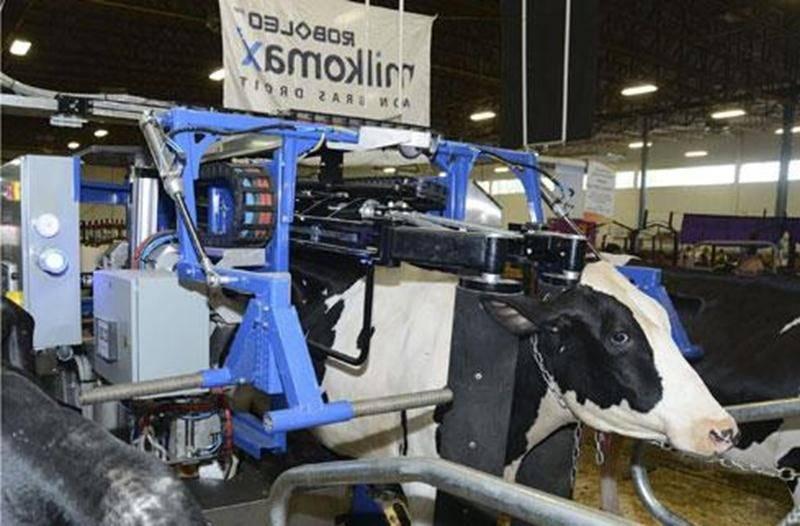 Le robot de traite Roboleo peut prendre en charge jusqu'à 70 vaches.