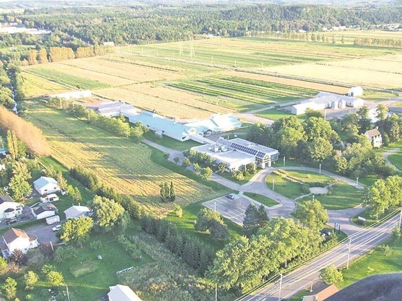 Malgré la faillite, Les Laboratoires du Saint-Laurent devraient continuer à faire partie des locataires du CDBQ, un centre de recherche privé de La Pocatière, mais sous la raison sociale Laboratoire LSL.