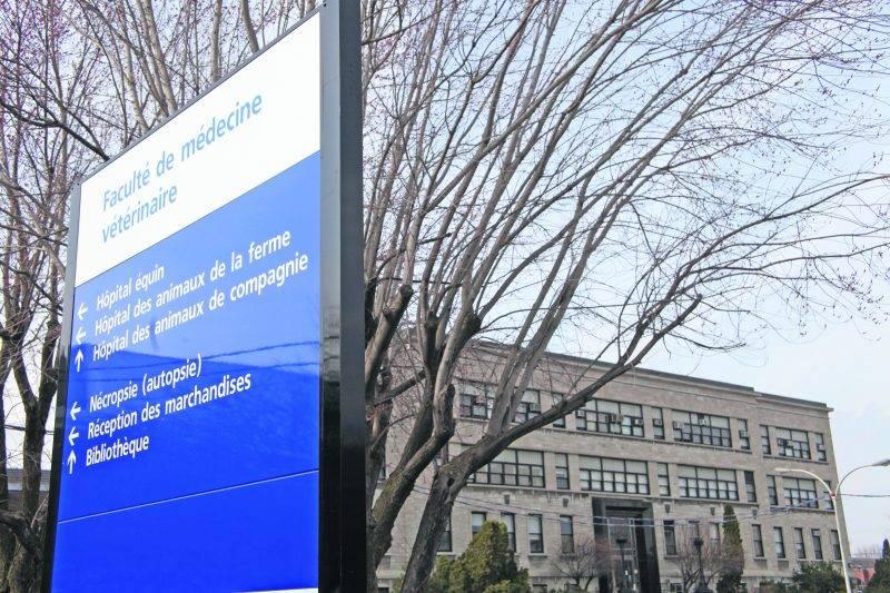 En rendant publique son offre finale aux cliniciens, l'Université de Montréal a apparemment tenté de « forcer la main du syndicat en influençant directement ses membres », indique la décision. Photothèque | Le Courrier ©