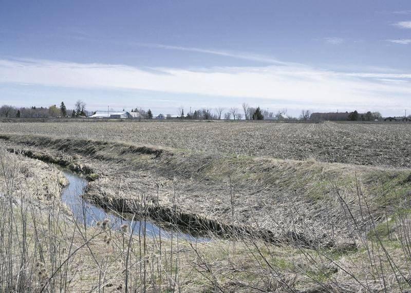 Au lieu de 50 hectares, c'est un dézonage réduit à 22 hectares qui est maintenant proposé pour l'agrandissement du parc industriel Olivier-Chalifoux, dans le secteur ouest de Saint-Hyacinthe, là où coule le ruisseau Plein Champ. Photo archives | Le Courrier ©