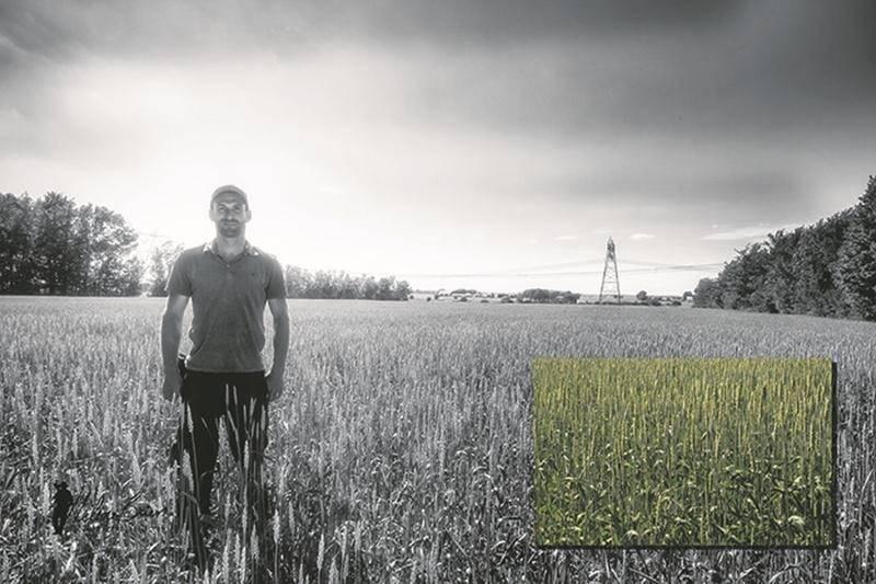 Toujours à la recherche de nouveautés pour améliorer ses cultures tout en protégeant l'environnement, cet agriculteur fait l'essai d'un semis à la volée. Tout comme le semis direct, cette méthode de culture favorise le maintien d'une bonne vie microbienne dans le sol.   Photo Hélène Brien   MRC ©