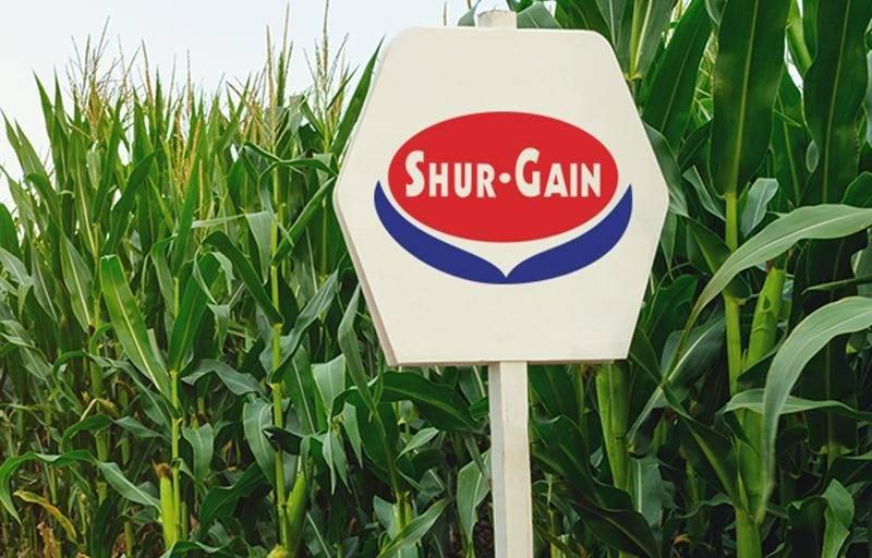 Shur-Gain implante un bureau régional à Saint-Hyacinthe