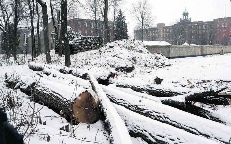 Un immeuble résidentiel est actuellement en construction sur l'ancien cimetière paroissial datant du milieu du 19e siècle. Photo Robert Gosselin | Le Courrier ©