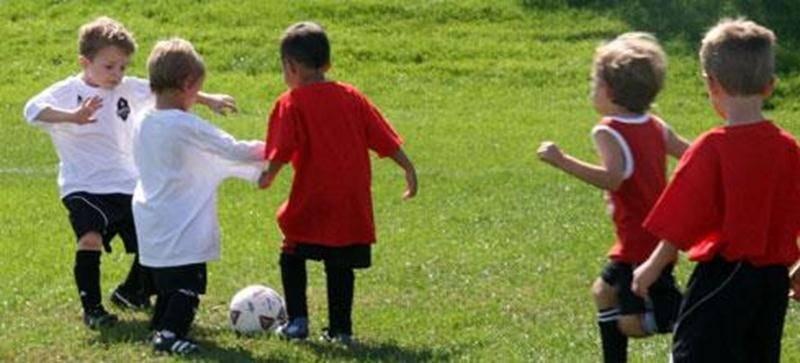 Le Festival de micro-soccer Vertdure aura lieu le samedi 12 juillet dès 9 h au parc des Loisirs Bourg-Joli pour une 27 e édition. Il s'agit d'une première expérience pour les petits joueurs de 5 et 6 ans qui défilent sur les terrains et repartent heureux d'avoir accompli cet exploit. Le tournoi est axé principalement sur le plaisir et la participation en équipe. Pour plus d'information : 450 773-1824 ou <a href=