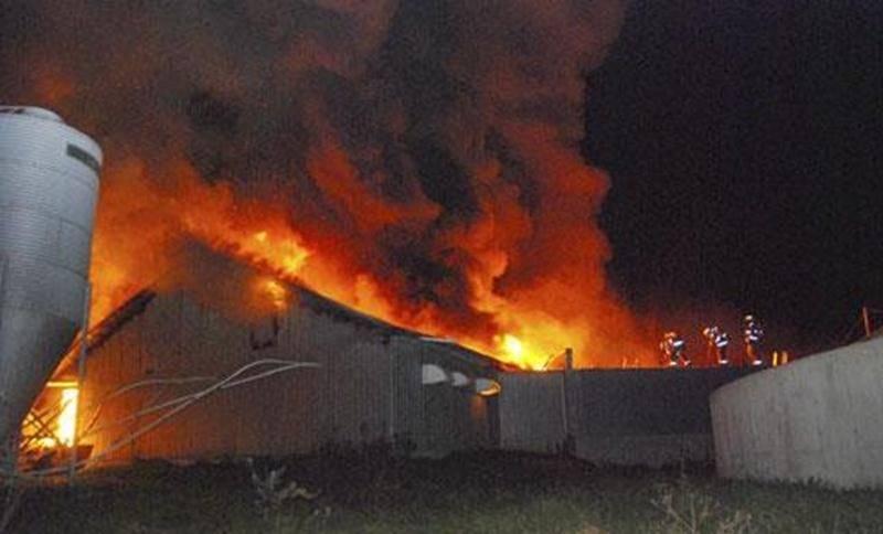À peine quelques semaines après un violent incendie dans deux bâtiments de la porcherie de la Ferme Fritsch, les flammes ont ravagé deux autres bâtisses samedi dernier.