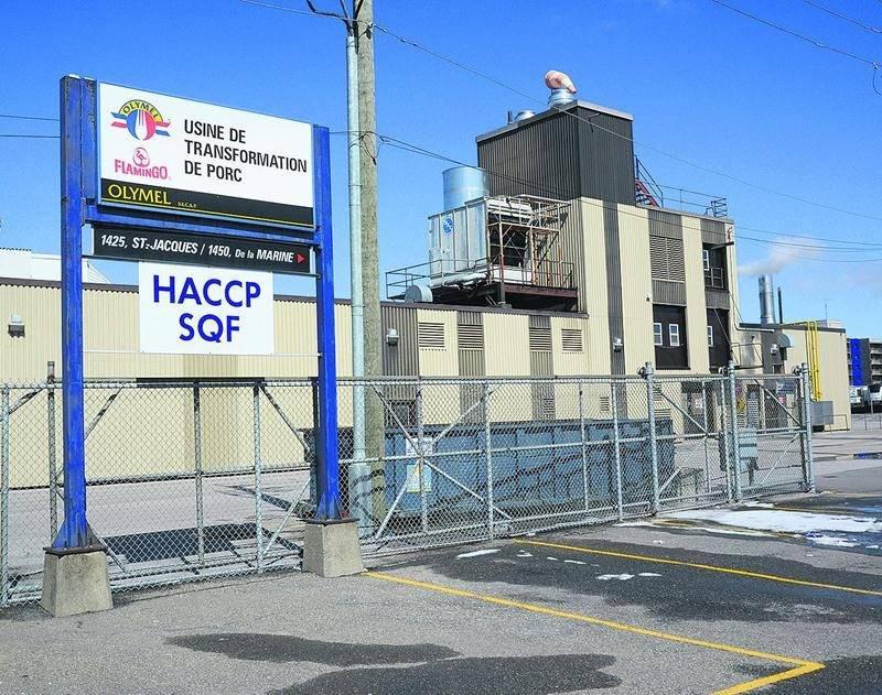 L'usine de transformation de porc Olymel de Saint-Hyacinthe. Photo François Larivière | Le Courrier ©