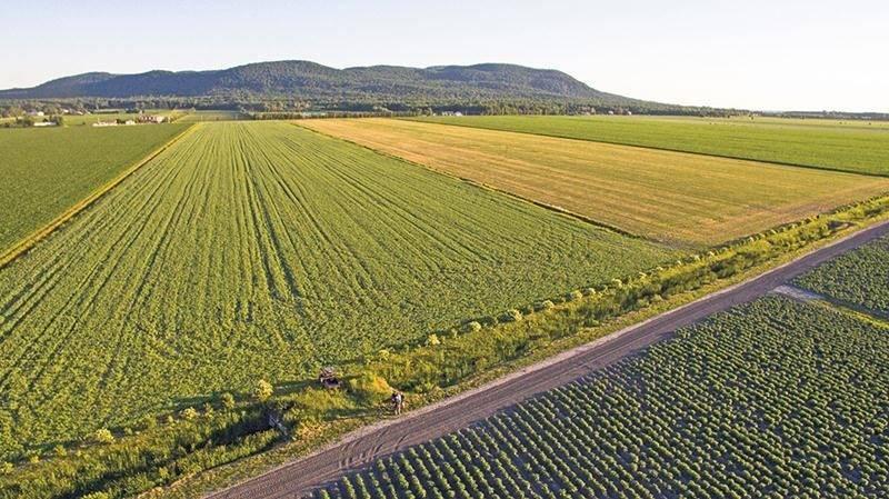 Vue aérienne de terres agricoles sur le territoire de Saint-Damase. Photo Sébastien Deraspe