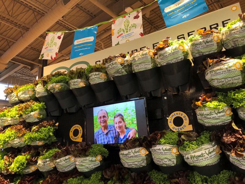 Afin de promouvoir les salades de l'entreprise Mont Vert, un mur végétal a été installé dans le département des fruits et légumes du Métro Plus Drouin situé à Longueuil. Dans cette installation, il y avait une serre miniature avec un circuit d'eau pour montrer à la clientèle que leur salade provient d'une culture hydroponique.