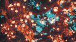 Vivez la magie des sentiers lumineux  au parc Les Salines